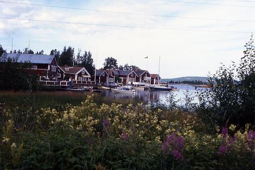 Остров Алнон