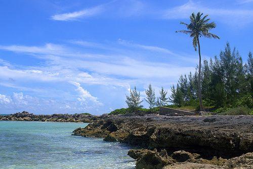 Остров Андрос Багамы AF1G/C6A DX Новости