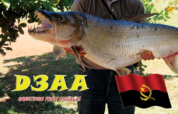 Angola D3AA QSL