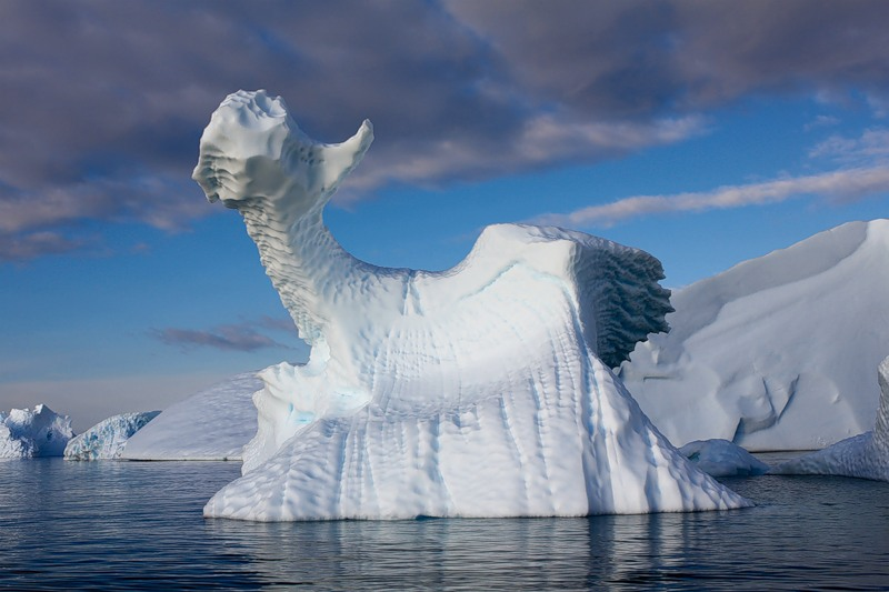 Antarctica RI1ANT