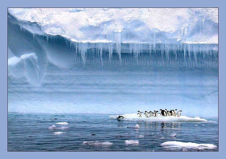 Antarctica ZS7V DX News