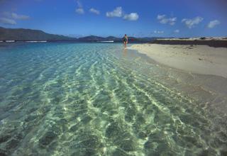 Antigua Island V25R