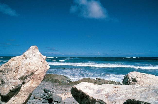 Antigua Island V26BM