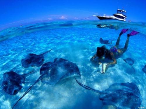 Aruba DX News P49X