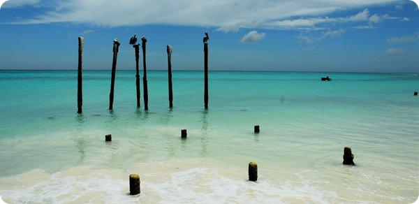 Aruba P49Y 2012