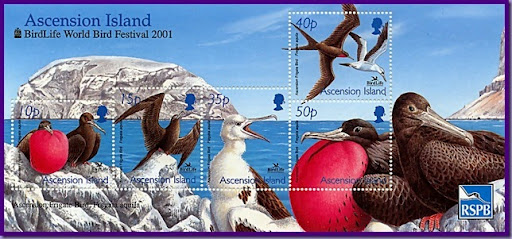 Ascension Island ZD8W 2012