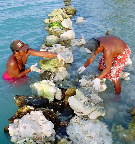 Atoll Tarawa Kiribati DX News T30OU