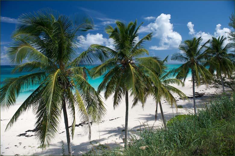 Багамские Острова C6AKX