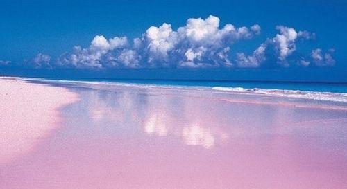 Багамские острова C6A/9H5G DX Новости Пляж Розовый песок