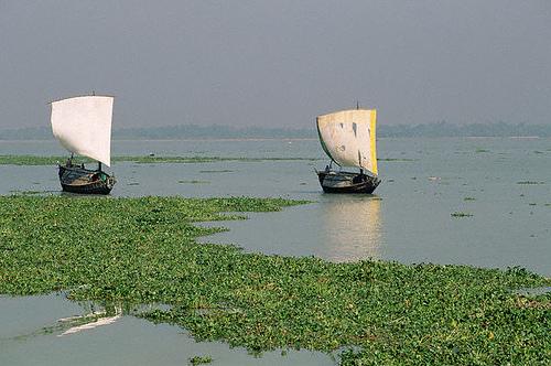 Бангладеш S21FGC