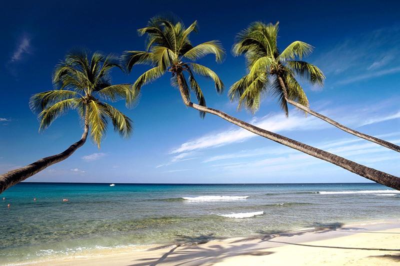 Barbados 8P1V 8P9RM