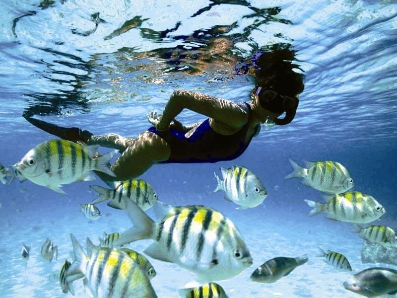 Барбадос 8P5A Туристические Достопримечательности