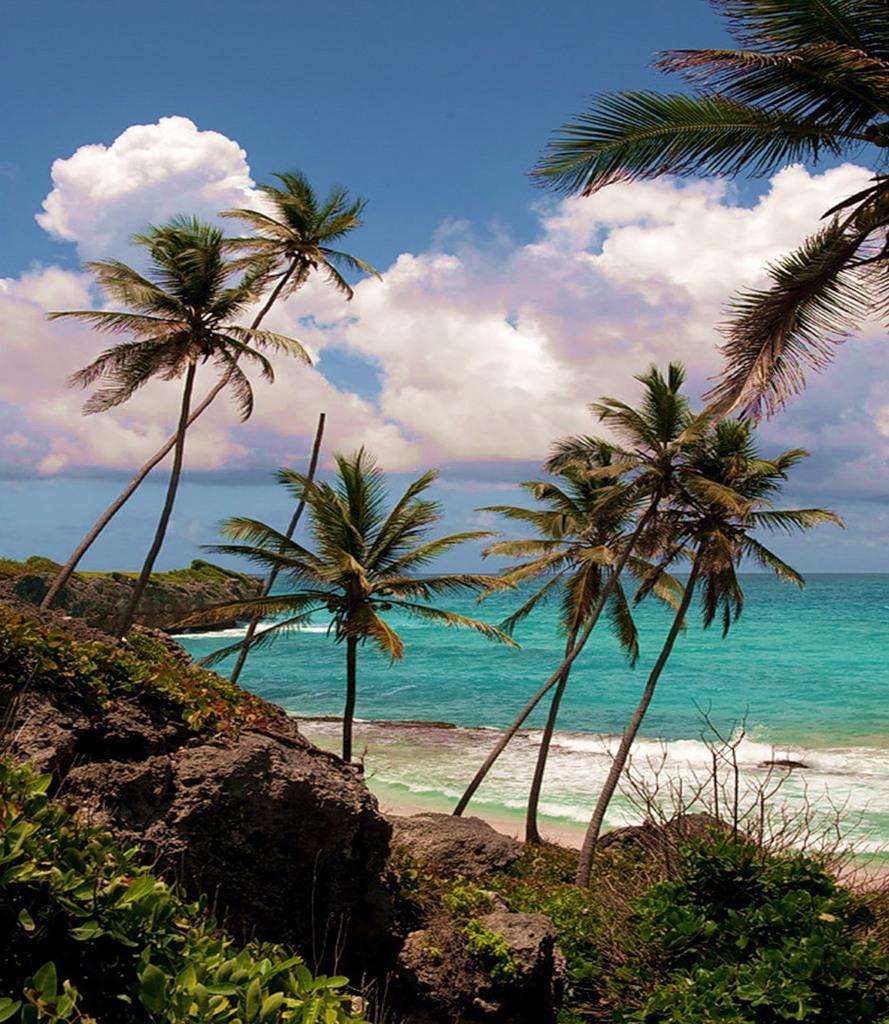 Barbados 8P9AZ DX News