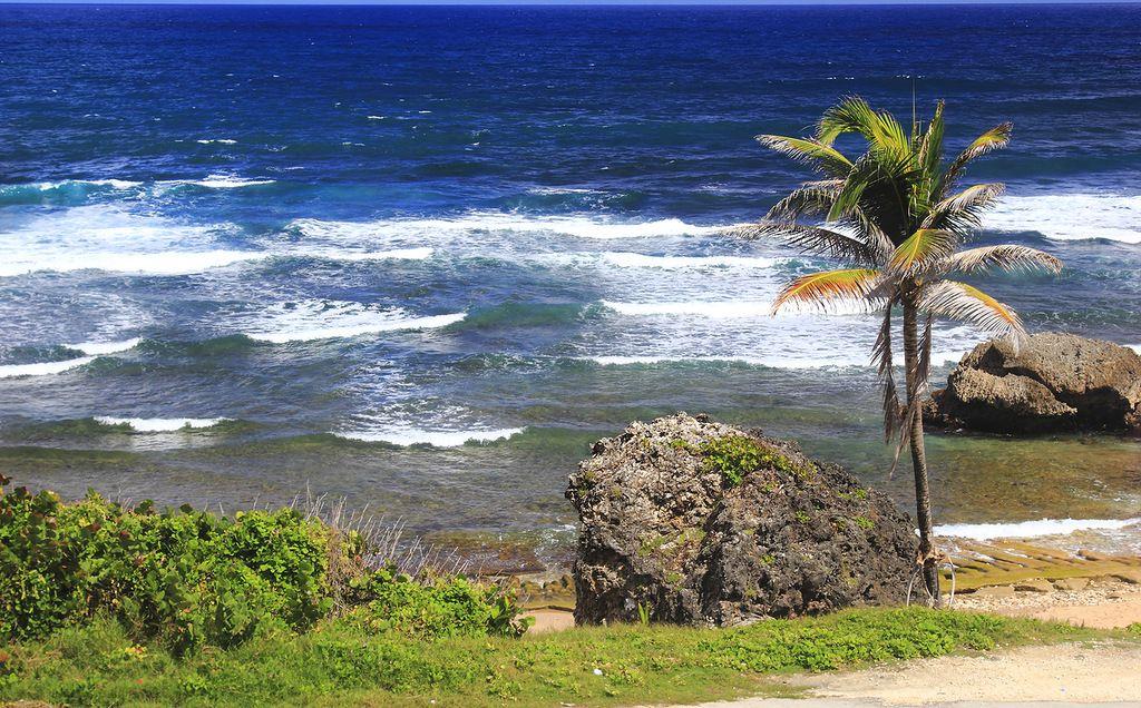 Barbados 8P9BZ