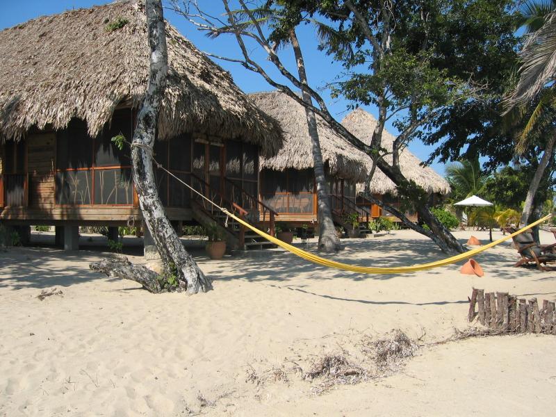 Belize V31FF V31LG
