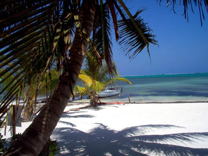 Belize V31FF V31LG DX News