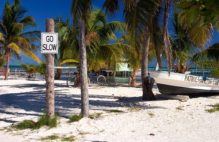 Belize V31IZ