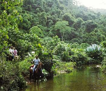 Belize V31RG
