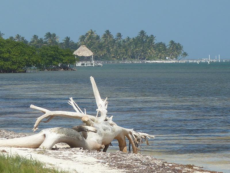 Belize V31RN