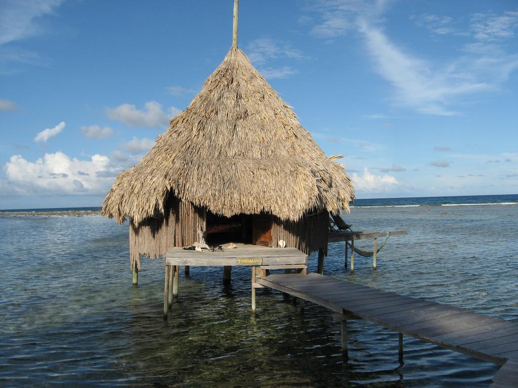 Belize V31YB DX News