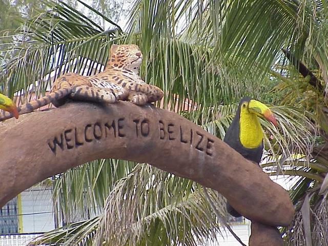 Belize V31YK