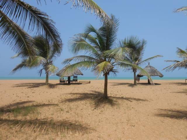 Benin TY1TT 2014 DX News