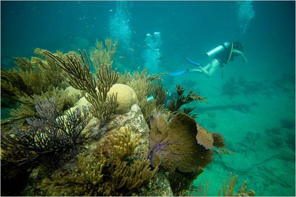 Bermuda Islands OH3JR/VP9