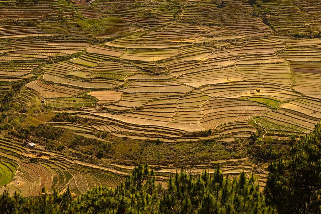 Bhutan A52DL A52VM