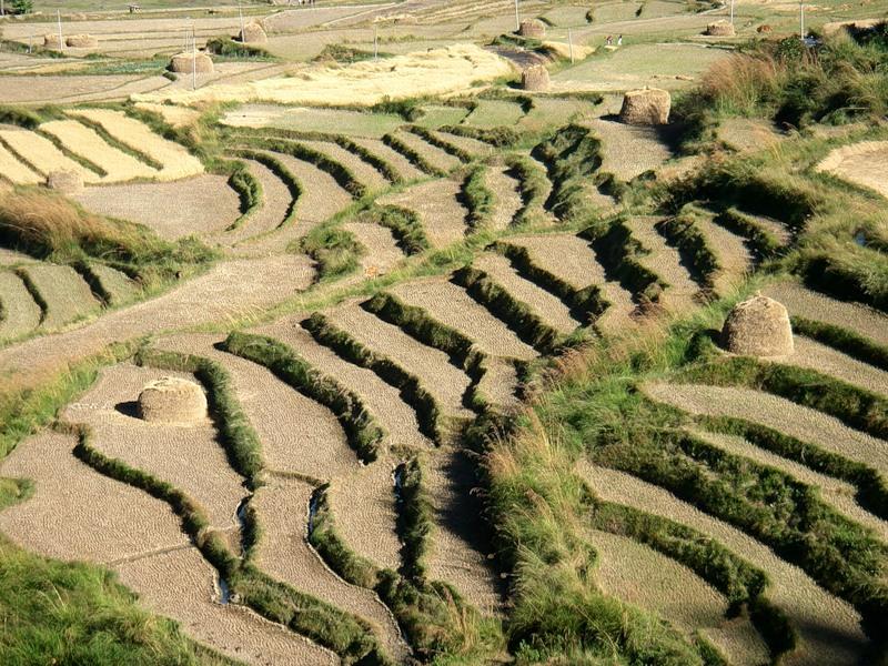 Бутан A52JY A52BA A52MA A52KJ