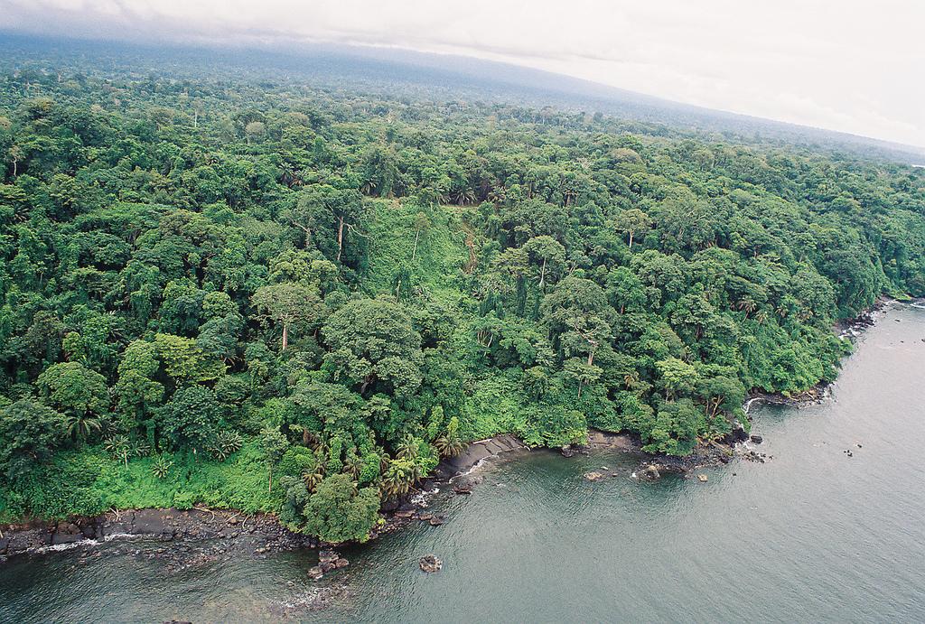 Bioko Island Fernando Poo Island 3C6A