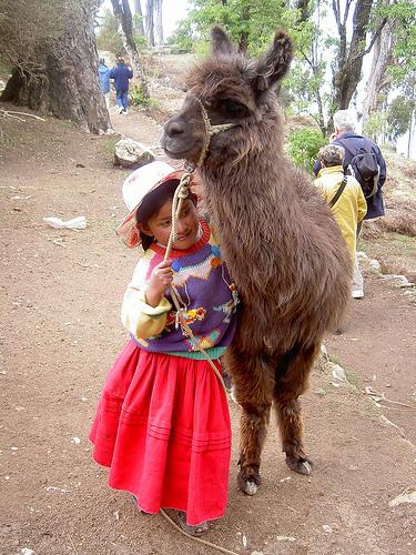 Боливия CP6/DF9GR