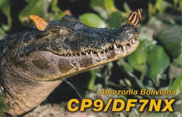 Bolivia CP9/DF7NX QSL
