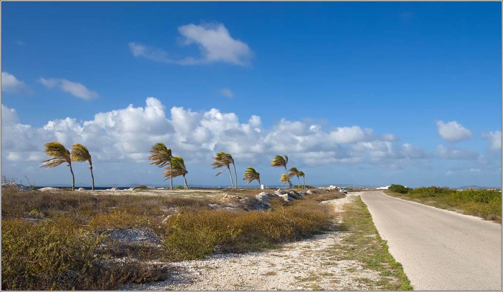 Bonaire Island PJ4X 2012