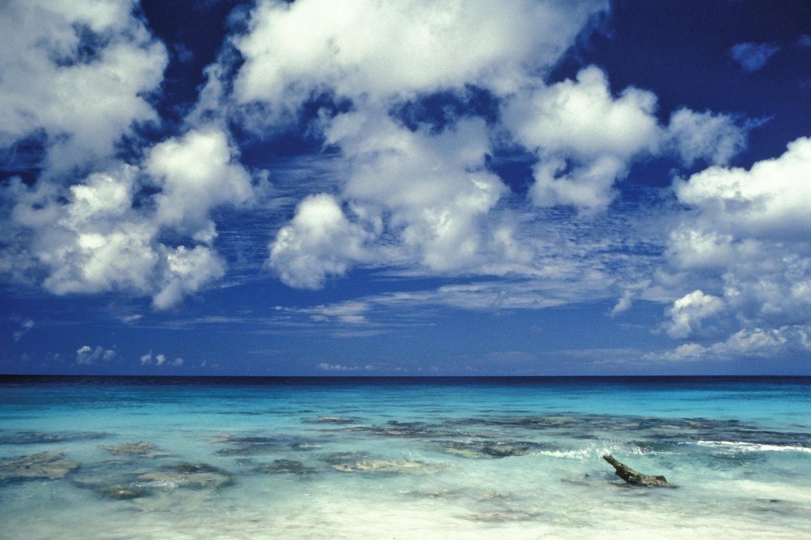 Bonaire PJ4X DX News