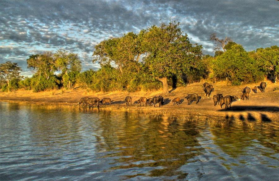 Ботсвана A22LL