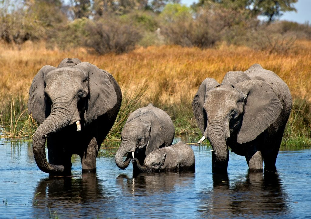 Botswana A25/HB9CPS Tourist Attractions