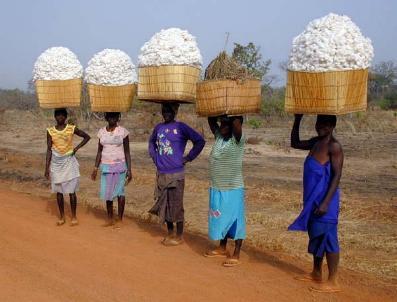 Burkina Faso XT2VVO DX News