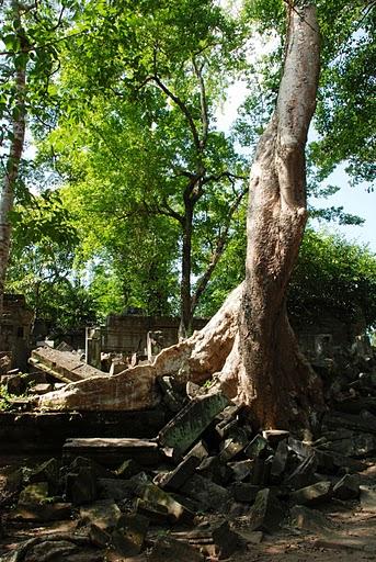Cambodia XU7FZM XU7WZM DX News
