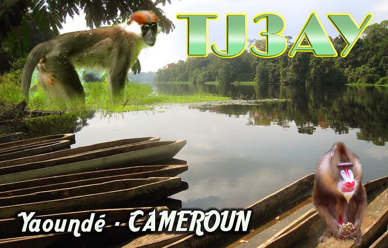 Cameroon TJ3AY QSL