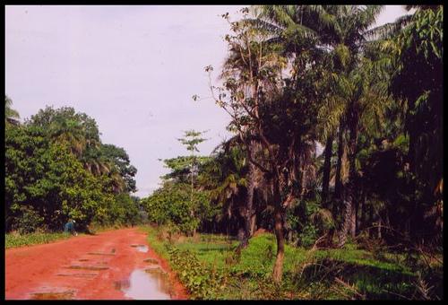 Carabane Island Senegal 6V2R/P