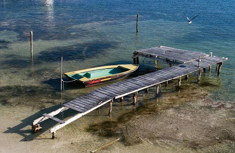 Caye Caulker Island V31MO V31MX V31WH