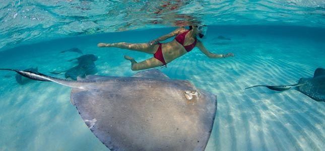 Cayman Islands ZF2AW Tourism