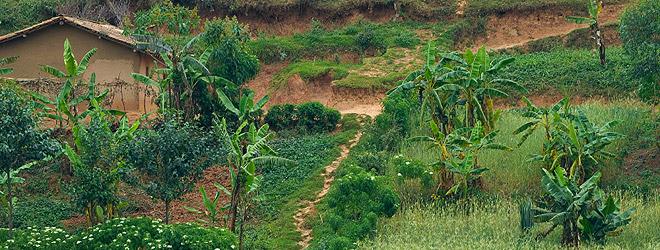 Центрально Африканская Республика TL0CW DX Новости