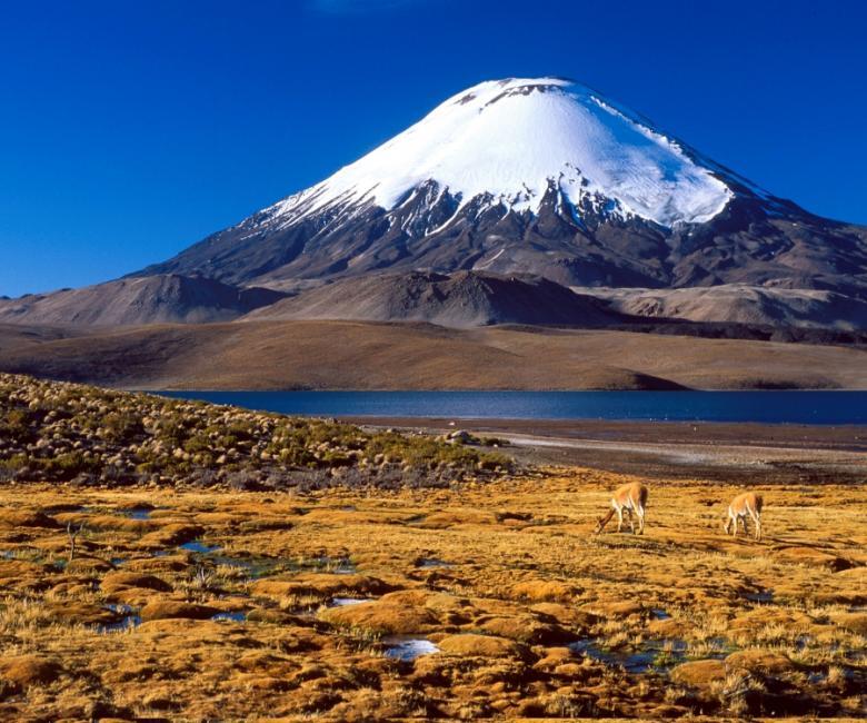 Chile CE1D DX News
