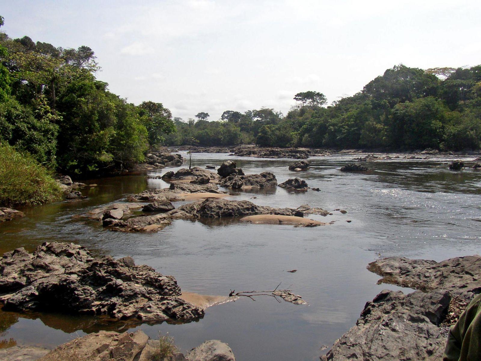 Congo TN2MS