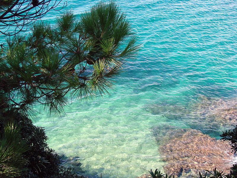Corsica Island TK/IW5ELA DX News