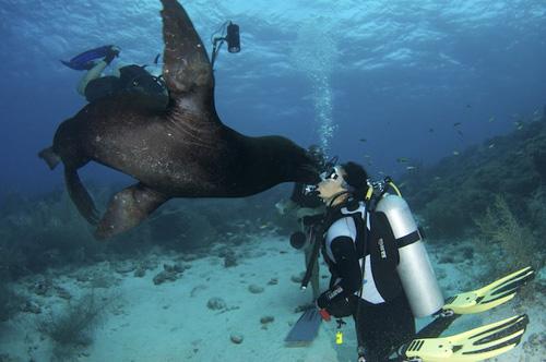 Curacao Island PJ2/W9JUV
