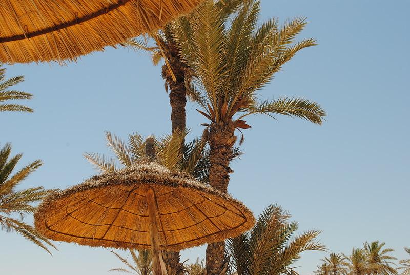 Djerba Island 3V8SM DX News