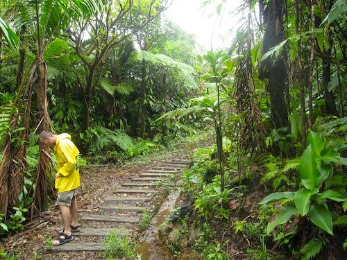 Доминика Остров