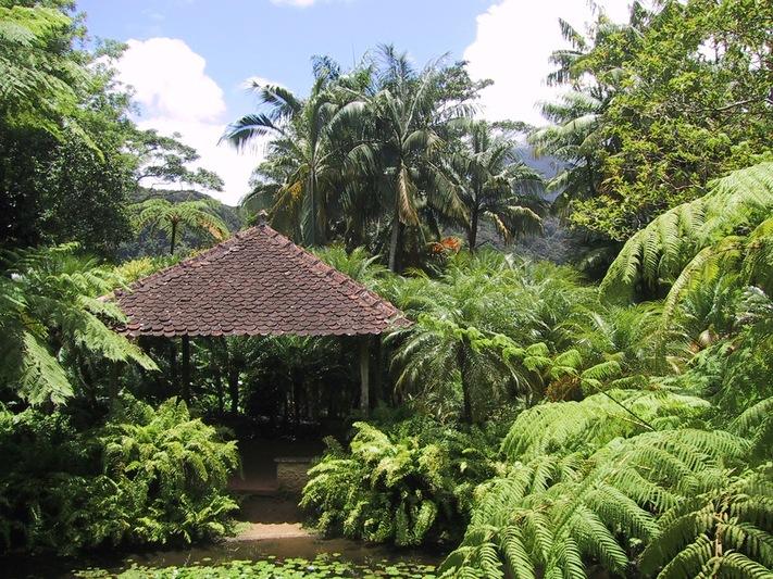 Dominica Island DX News
